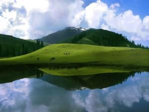 """<img src=""""http://www.thenextrex.com/wp-content/uploads/2015/03/sheosar-lake-deosai-plains.jpg"""" alt=""""Sheo-Shar Lake Deosai"""">"""