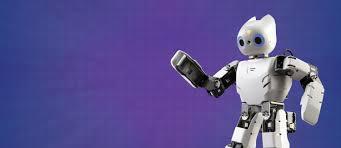 man marries robot