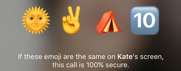 telegram call security