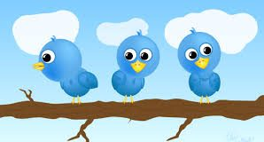 increase twitter followers