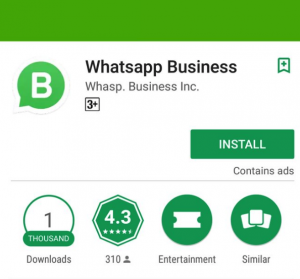 fake whatsapp business